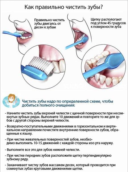 Как часто можно чистить зубы зубным порошком